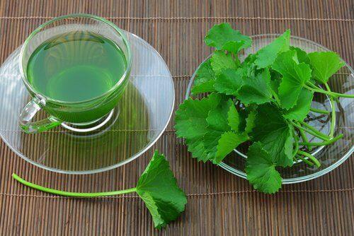 Чай с сельдереем