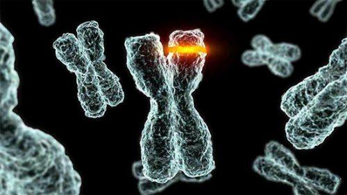 Хромосомные изменения
